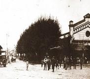 Hala Moldovei 1919